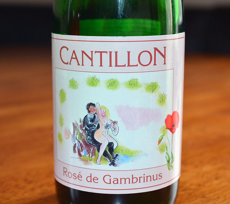 Rose de Gambrinus