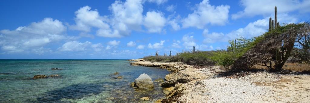 Aruba Header