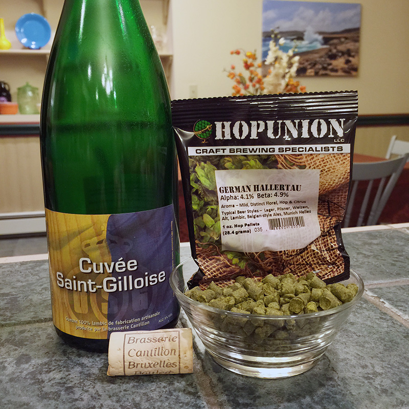 Hoppy Sour Beers
