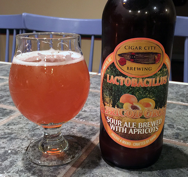 Cigar City Brewing Lactobacillus Apricot Grove