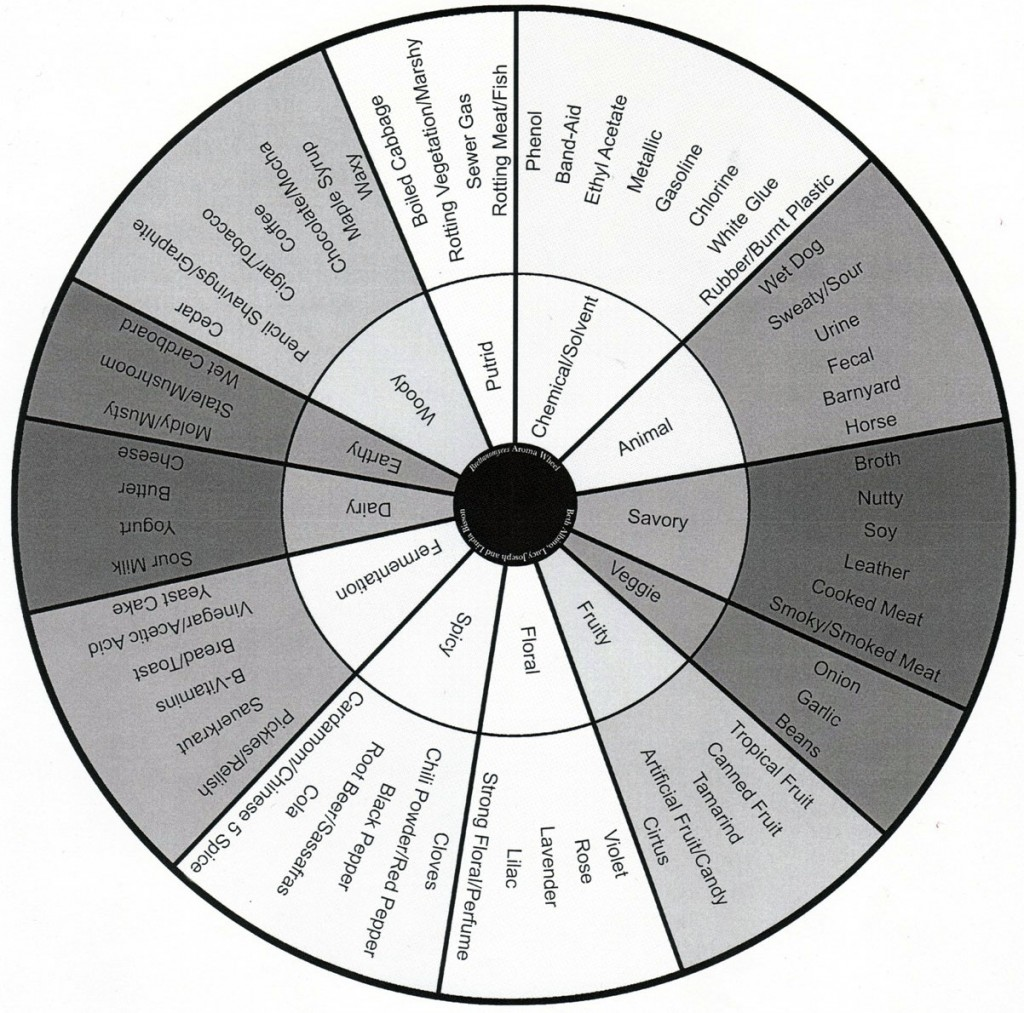 "Not every variety of Brett ""Funk"" is something you want in your beer. This Brettanomyces flavor and aroma wheel helps to group and categorize the various potential byproducts of Brettanomyces aging."