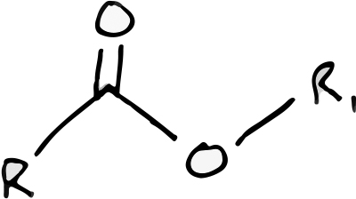 The ester functional group. In this representation R & R1 are any two different carbon-based chains.