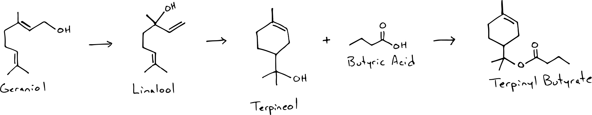 Terpinyl Butyrate
