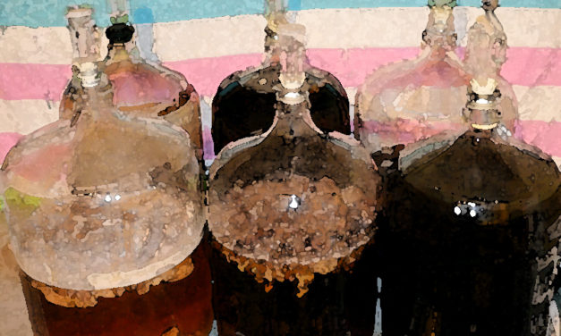 Fundamentals of Sour Beer Fermentation